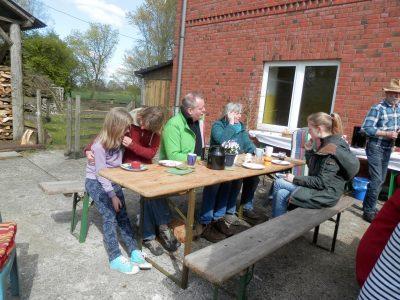 Grünes Café im April