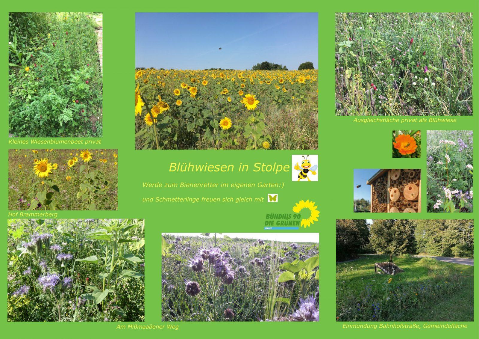 Blühwiesen-Plakat von  Petra Sauer-Wolfgramm
