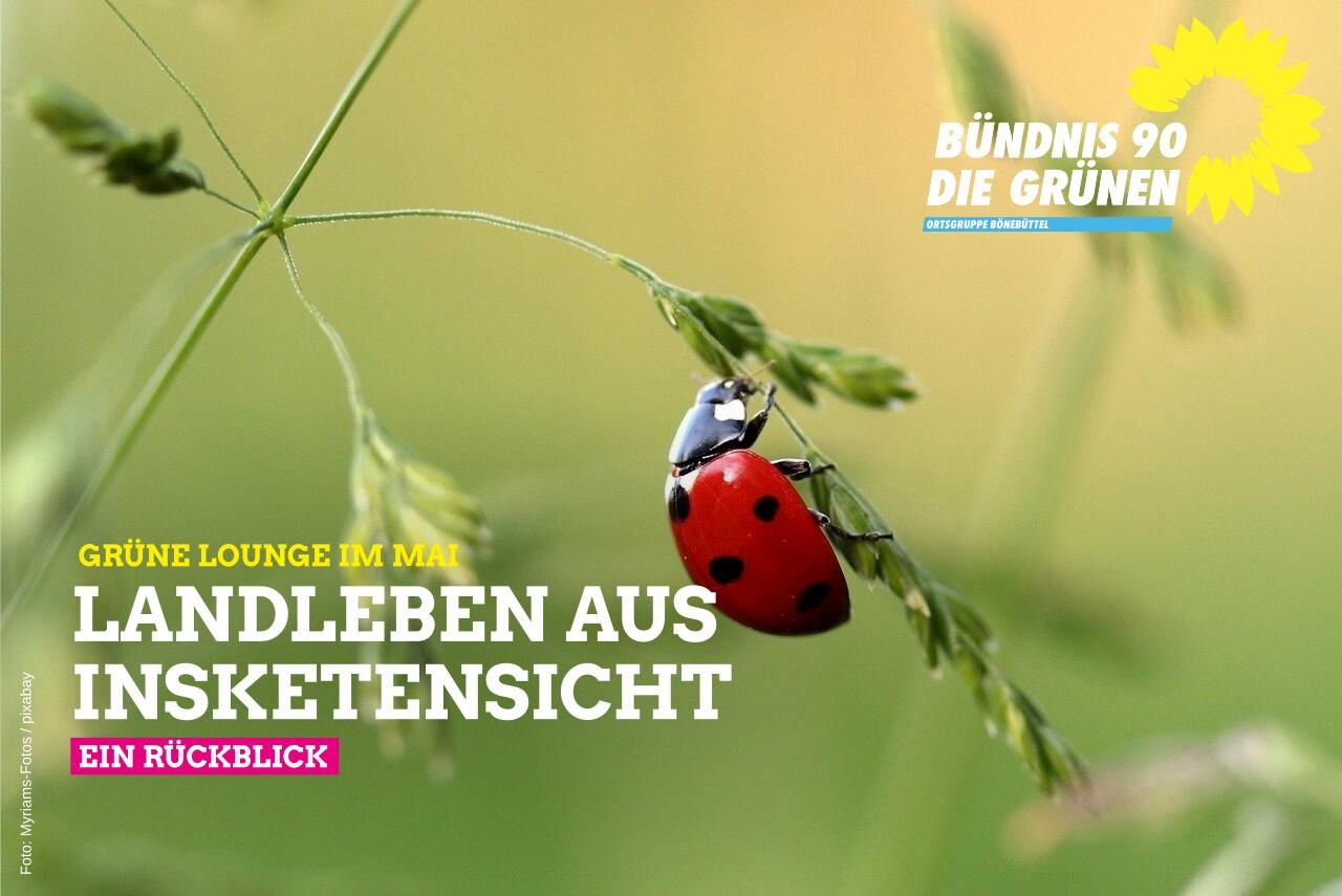 Landleben aus Insektensicht – Rückblick Grüne Lounge im Mai